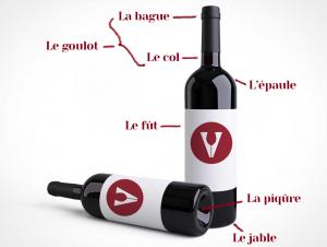 anatomie-parties-d'une-bouteille-de-vin-bocavi-décanteur-bague-épaule-fût-piqûre-jable-goulot