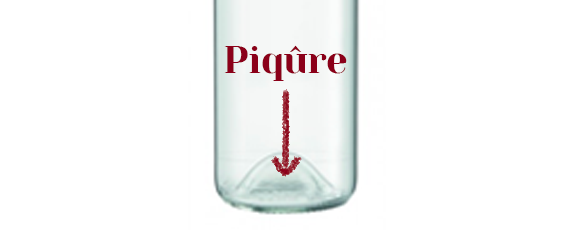 piqure-anatomie-d'une-bouteille-de-vin-bocavi-décanteur