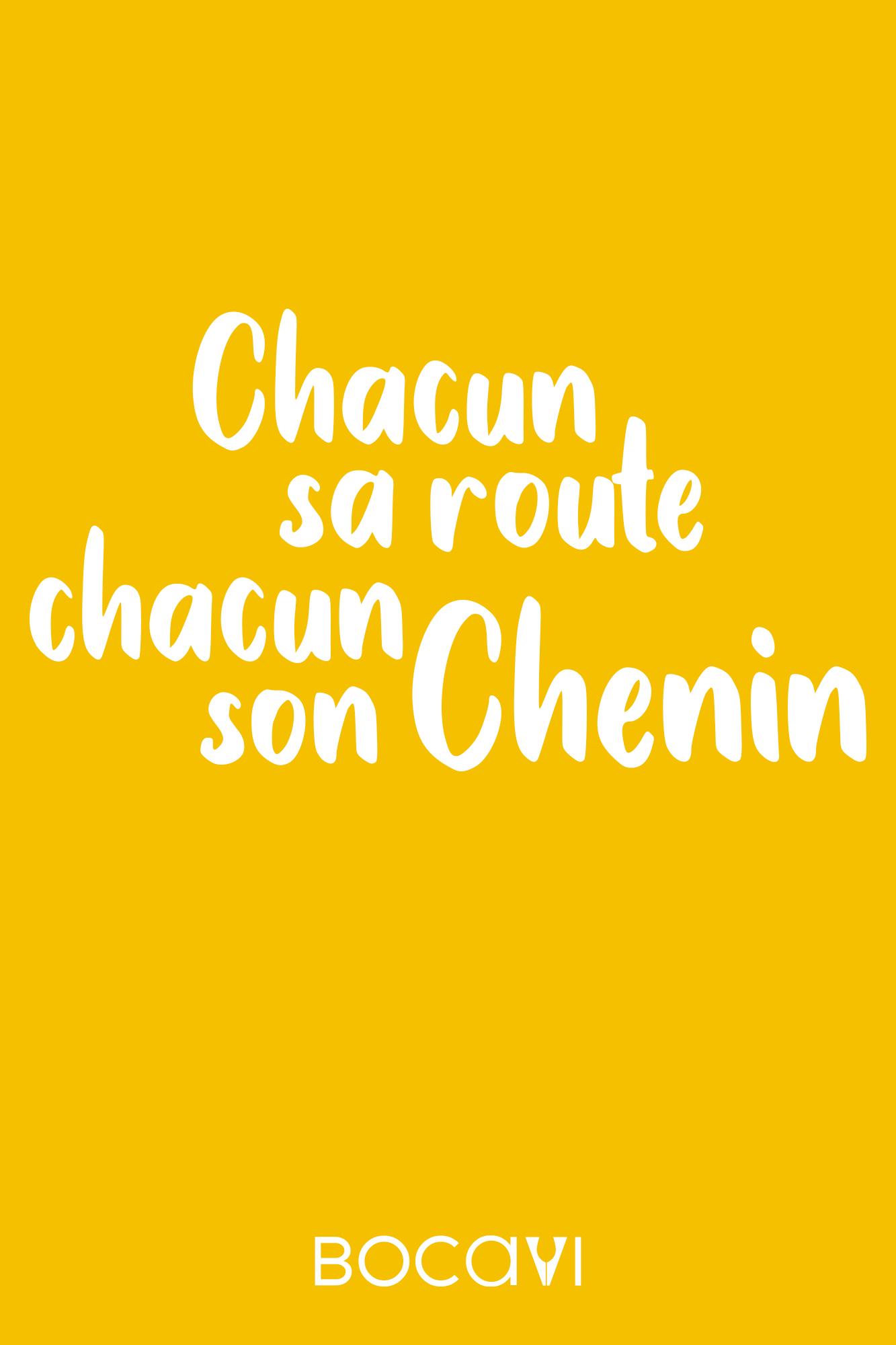chacun-sa-route-chacun-son-chenin-tonton-david-bocavi-vin-tshirt-sweat